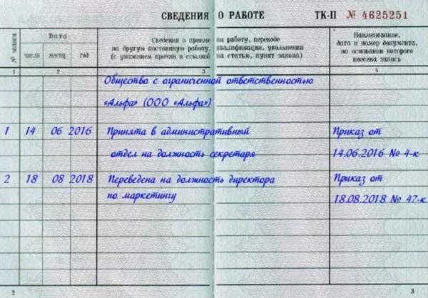 Нужна ли трудовая книжка при регистрации ип октмо по месту жительства в декларации 3 ндфл